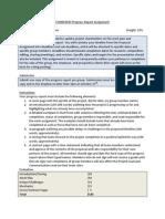 COMM3047 Progress Report Assignment