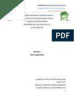 proceso de visita domiciliaria.pdf