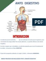 digestivo 2012.pptx