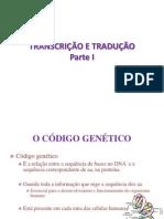 Aula 4_ Transcrição e Tradução.ppt