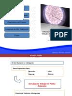 _Diagnostico del cáncer a través de imágenes de alta resolución.pdf