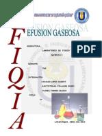 EFUSION GASEOSA.pdf