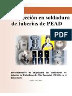 inspeccionlab.pdf