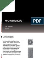 Microtubulos amau.pptx