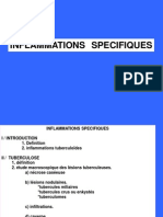 inflammation specifique.pdf