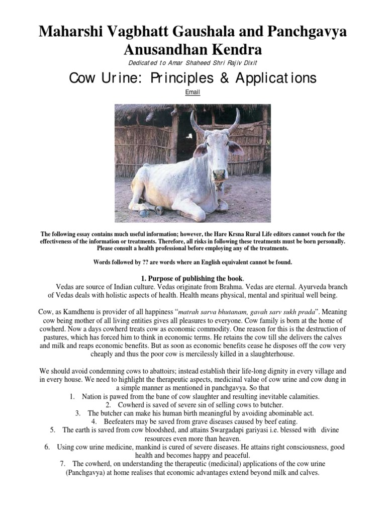 cow urine research in usa