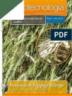 AGROTECNOLOGIA - AÑO 3 - NUMERO 27 - JUNIO 2013 - PARAGUAY - PORTALGUARANI