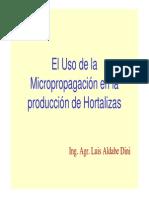 micropropagacin Aldabe.pdf