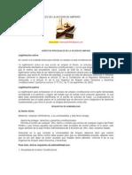 ASPECTOS PROCESALES DE LA ACCION DE AMPARO.docx