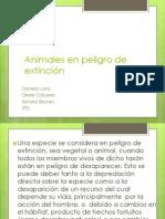 Animales en peligro de extinción (1).pptx