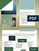 TRABAJO PRACTICO DE ENERGIAS BIODIESEL.pptx