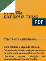 EXTRA-Literatura e Estudos culturais SLIDES.pptx