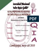 II   GRUPO    DE   CATIONES.pdf