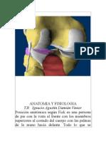 ANATOMIA Y FISIOLOGIA.doc