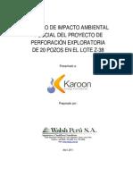 Resumen Ejecutivo Final ambiental.pdf