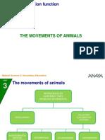 Movements_animals.ppt