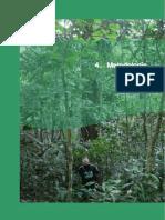 Capitulo 4 Metodologia (1)-cum.pdf