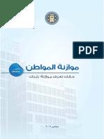 Egypt Citizen Budget