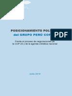 POSICIONAMIENTO POLÍTICO del GRUPO PERÚ COP 20