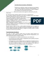 TEV_hibridacion_rr.pdf