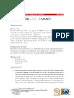 SecadoPorLiofilizacion.pdf