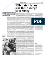 Ethiopian Islam and the Challenge of Diversity