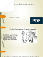Control Sensoriomotriz.pdf