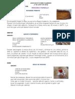 PLANTILLA PER AL BLOC.pdf