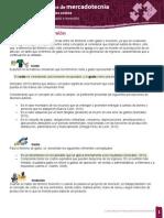 costo gasto e inversion.pdf