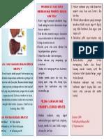 leaflet sirosis.pdf