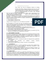 EL TRABAJO INTELECTUAL ENSAYO.docx