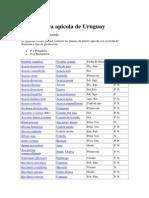 Flora Apicola Uruguay.docx