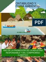 CONTABILIDAD Y AUDITORÍA AMBIENTAL.pdf