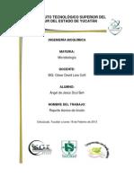 reporte tecnico de tincion.docx