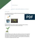 Manuel Fernando Aroche Alvarez.pdf