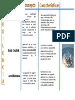 Mapa Conceptual Resilencia.pptx