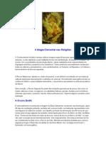 A Magia Elemental nas Religi€¦ões.doc