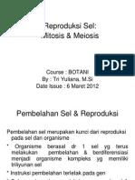reproduksi mitosis dan meiosis.pdf