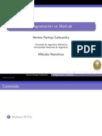 Proga_MatLab.pdf