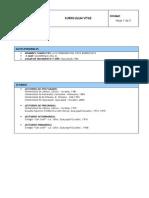 1381504486__curriculumSIDWEB.pdf