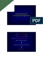 nomenclatura-Q-Org-I.pdf