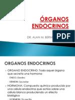 ÓRGANOS ENDOCRINOS.pptx