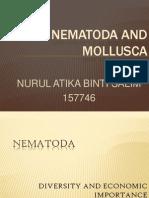 Nematode&Mollusca