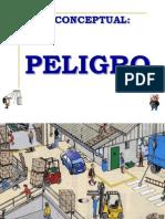 PELIGRO Y RIESGO SEGURIDAD 2014.pptx