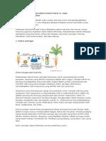 Bioteknologi Dan Reproduksi