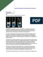 Los peligros de los cultivos genéticamente modificados.docx