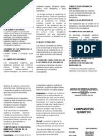 triptico compuestos quimicos.doc