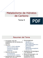Metabolismo Hidratos de Carbono.pdf