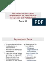Metabolismo-de-Lipidos-Metabolismo-de-Aminoacidos-Integracion-del-Metabolismo.pdf