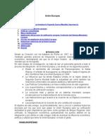 union-europea.doc